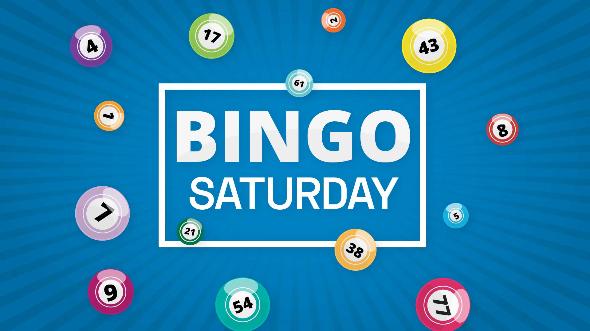 Bingo - Saturday Session
