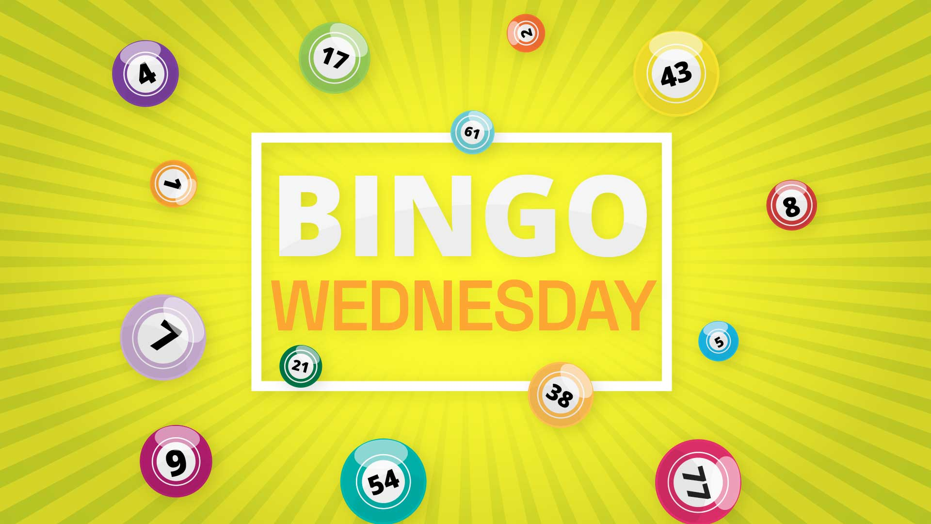 Bingo - Wednesday Session